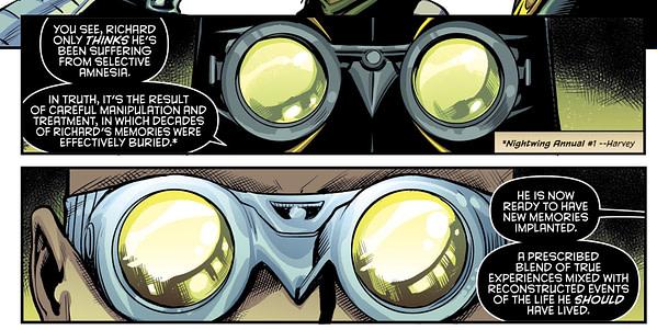 Nightwing - No Longer Ric Grayson?