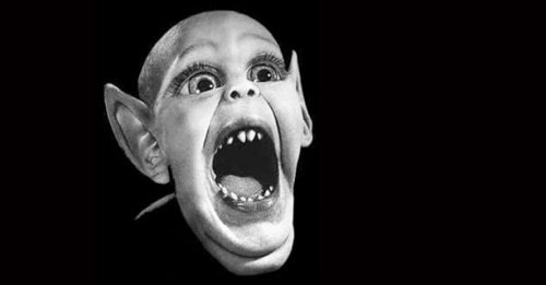 Bat-Boy Will Emerge From Cave for the Last Time Ever... Tonight