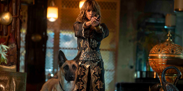 Halle Berry Deserves All the 'John Wick: Chapter 3- Parabellum' Praise