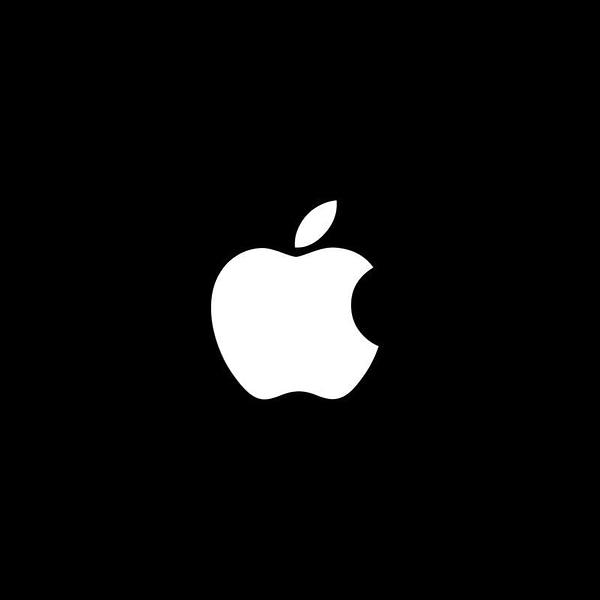 dickinson hailee steinfeld apple series