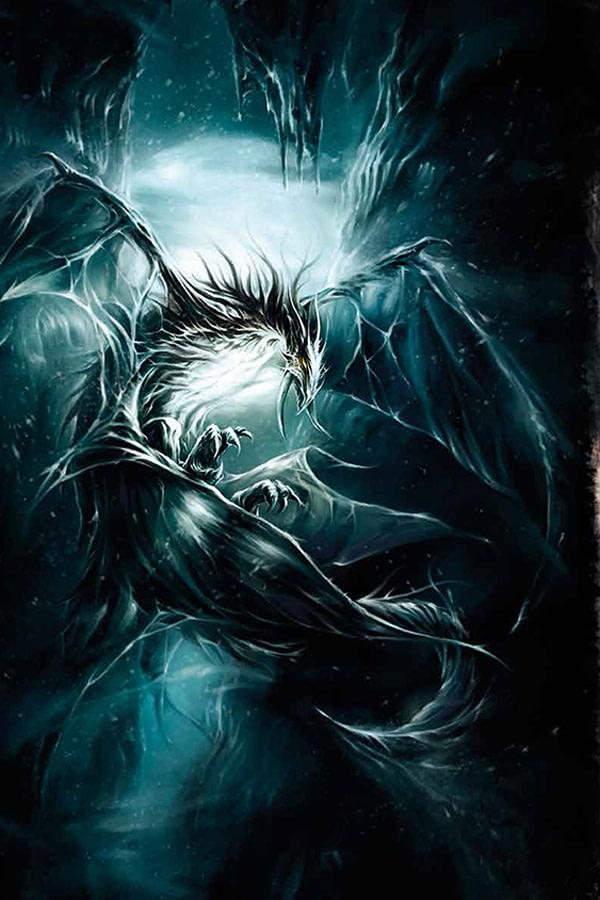 Dragons36
