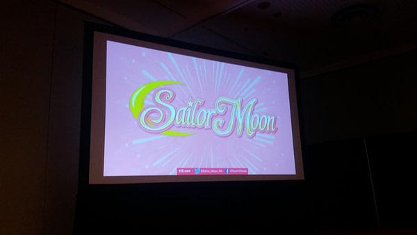sailor-moon-panel