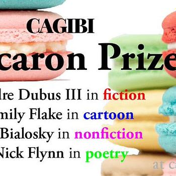 Emily Flake to Judge New Cartoon/Comics Category for Cagibi's Annual Macaron Prize