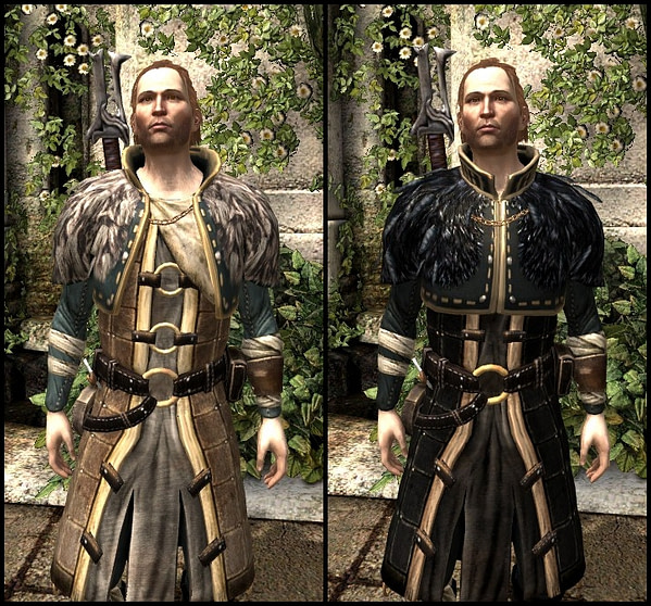 DA2_Renegade's_Coat_-_Before_and_After_Comparison_-_Anders_companion_armor