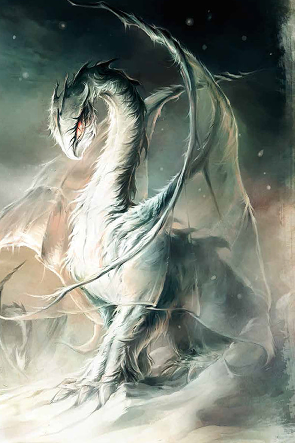 Dragons24