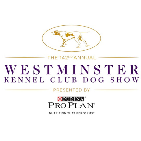 2018 westminster dog show
