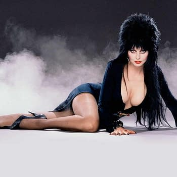 Wanna Buy Elvira Mistress of the Darks Dress AND Wig at Auction