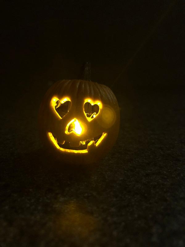 NECA Halloween 2018 Michael Myers 13