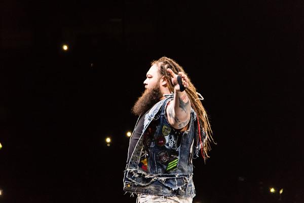 Hamburg, Germany - November 10, 2017: The Match of Finn Balor vs Bray Whatt during WWE Live Tour 2017. Editorial credit: Bjoern Deutschmann / Shutterstock.com