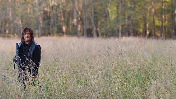 Daryl est à la recherche de The Walking Dead, gracieuseté d'AMC.