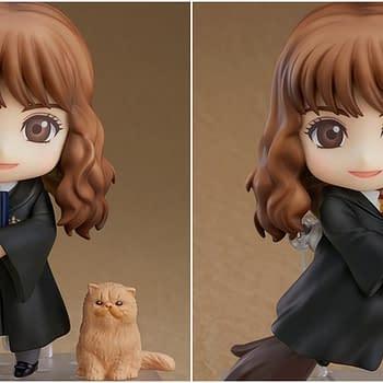 Hermione Granger Harry Potter Nendoroid Collage