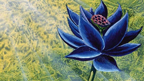 The artwork for Magic: The Gathering's famed Black Lotus, a highly-valuable card to the history of the game, illustrated by Christopher Rush.