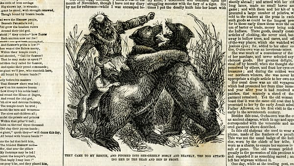 The New York Weekly Volume 15 #33 from July 12, 1860 featuring Grizzly Adams.