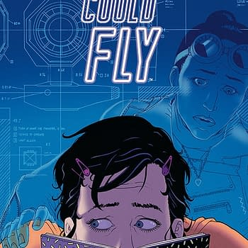 Exclusive: First Look at Martin Morazzos Cover for She Could Fly #3