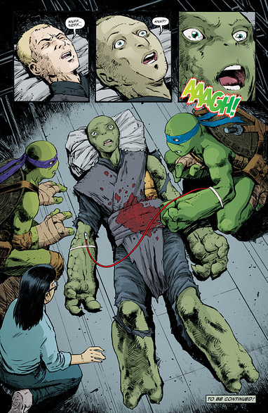 TMNT ONGOING #95 2ND PTG SECOND PRINT VARIANT COVER 1st JENNIKA FEMALE TURTLE 1