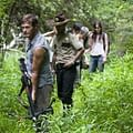 Zombie Rushes &#8211 From Warm Bodies To The Walking Dead World War Z To Wataha
