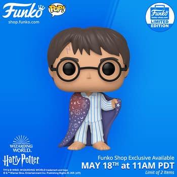 Funko Shop Exclusive Harry Potter