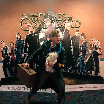Fantastic Beasts: The Crimes of Grindelwald- A Devoted Fans Thoughts