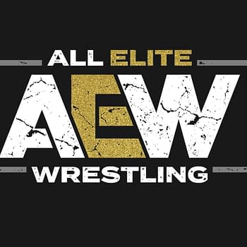 The Elite Announced All Elite Wrestling While Everyone Was Drunk on New Years Eve