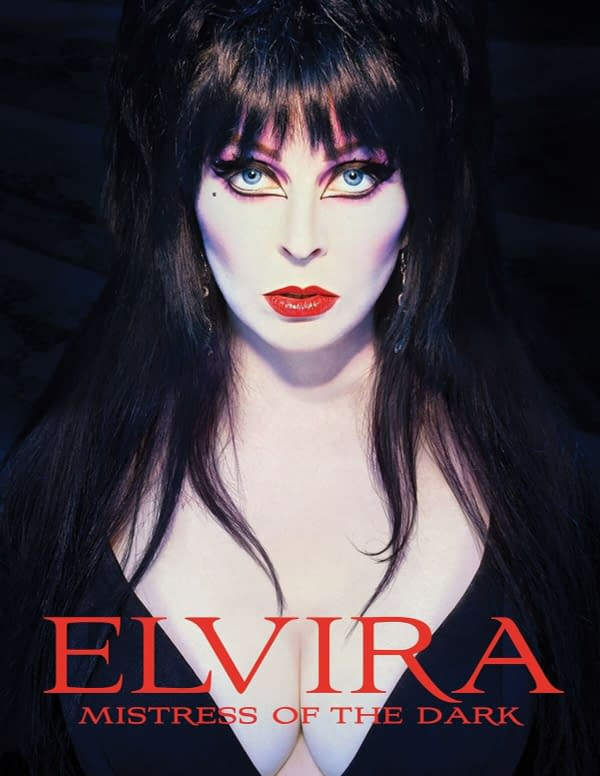 Wanna Buy Elvira Mistress of the Dark's Dress AND Wig at Auction?