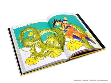 Dragon Ball Visual Adventure 286