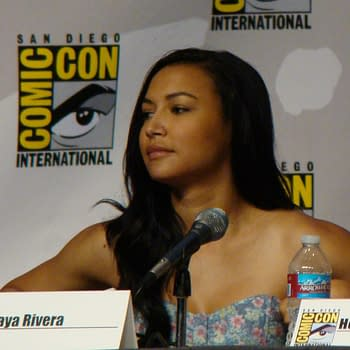 Former Glee Actress Naya Rivera Charged With Domestic Battery