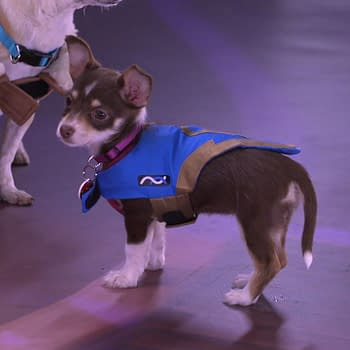 Overwatch: Blizzards Puppy Rumble Is for All the Kibble