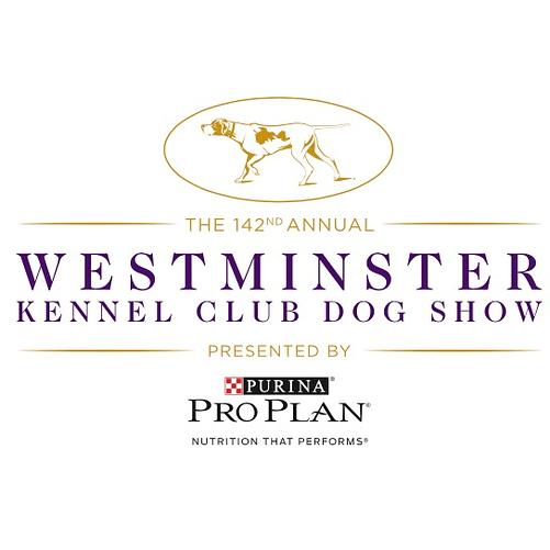 2018 westminster dog show 2017 best show