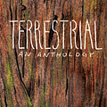 SPX Debuts -Terrestrial: A Fantasy Comics &#038 Illustration Anthology