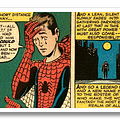 Marvel Misquotes Stan Lee In Trademark Registration Of With Great Power Comes Responsibility