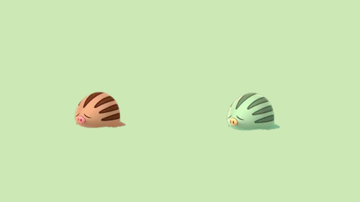Today is Shiny Swinub Spotlight Hour in Pokémon GO