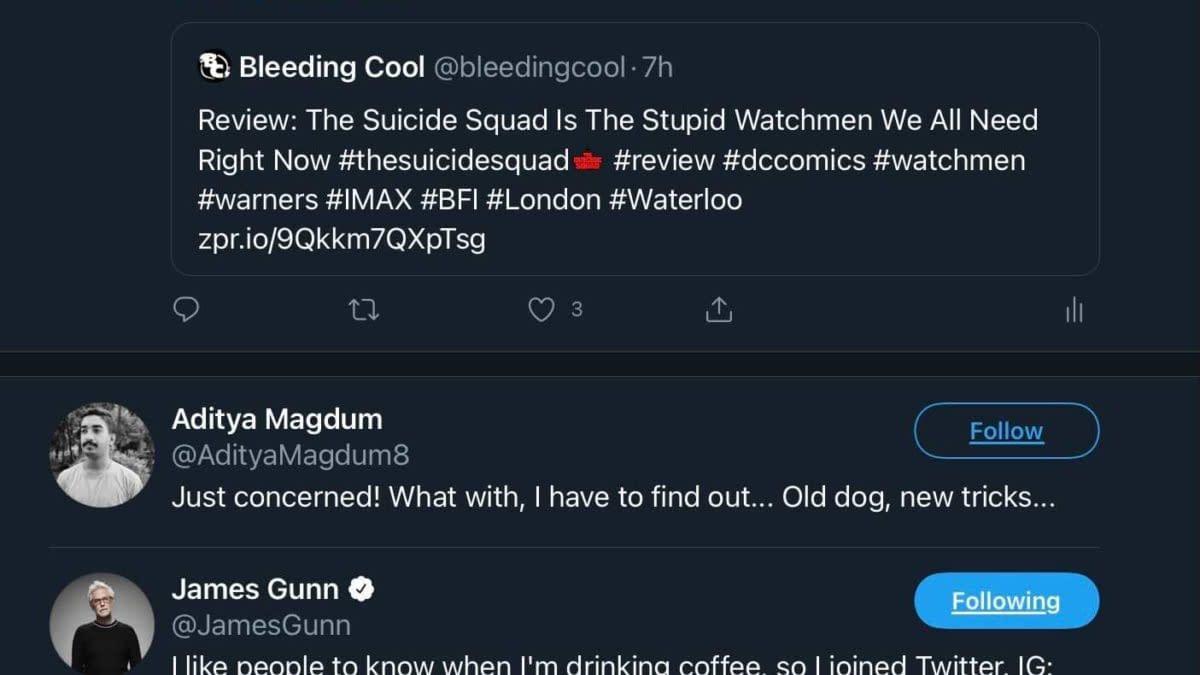 "James Gunn Likes ""Stupid Watchmen"" Description Of The Suicide Squad"