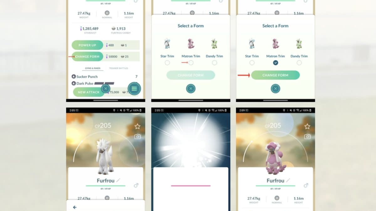 What Does Form-Changing Mean for Pokémon GO?