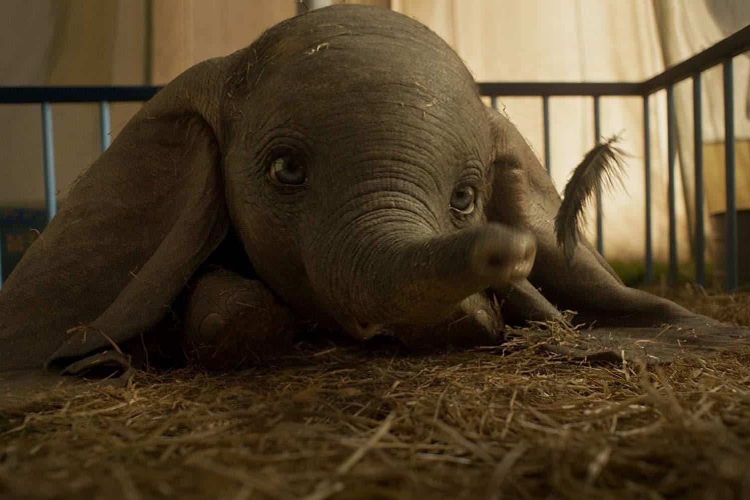Dumbo Takes Flight in This New Clip from the Live-Action Remake