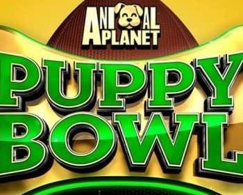 Animal Planets Puppy Bowl XIV Sets Ratings Record Unlike Super Bowl