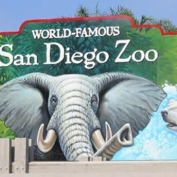 Astro City Original Art Stolen From San Diego Zoo
