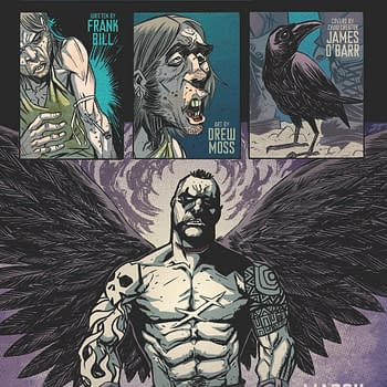 The Crow To Fly Again From IDW
