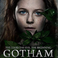 Gotham Creator Addresses The Curious Name Change