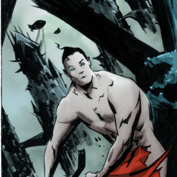 When Catwoman Gets An Eyeful Of A Naked Superman And The Rest Of DC Comics Go Skinny Dipping