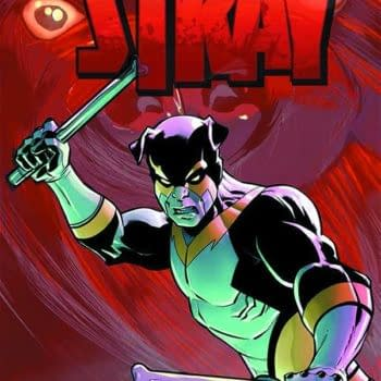 Rounding Up A Stray In January With Action Lab