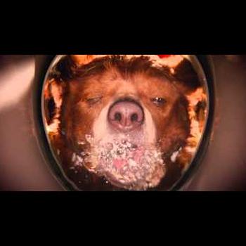 Live-Action Paddington Film Gets Trailer