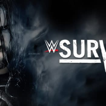 """WWE Survivor Series 2014 – The Worst """"Big Four"""" Event Of The Year"""