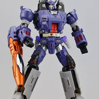 A Robot In Disguise By Any Other Name: Third-Party Transformers Toys