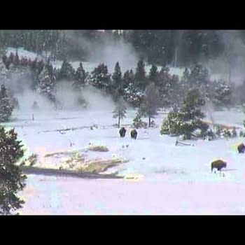 And Finally&#8230 Bigfoot In Yellowstone