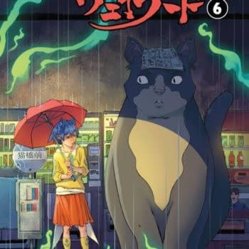 Totoro-Like Retailer Variant Cover For Wayward #6