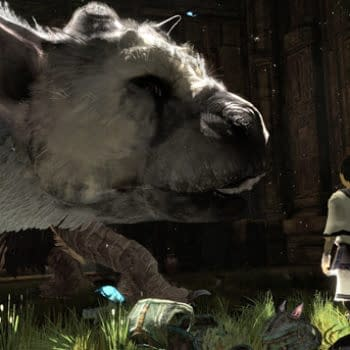 The Last Guardian Is Going To Make Some Kind Of Appearance At TGS