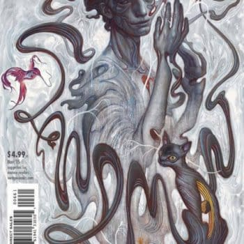 James Jean's Cover To Sandman Overture #6