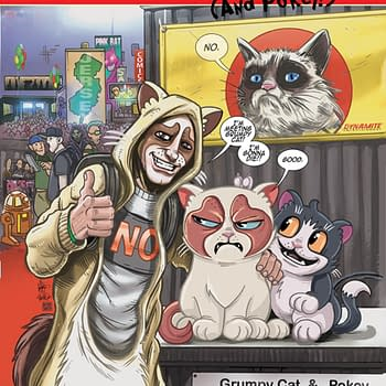 Bobs Burgers And Grumpy Cat Get New Jersey Comic Expo Exclusive Covers