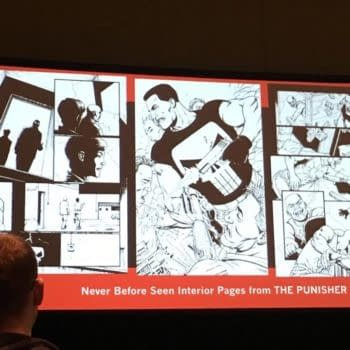 Our First Look At The Becky Cloonan/Steve Dillon Punisher Series, At C2E2