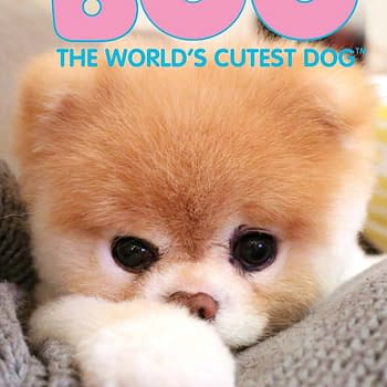 Dynamite Tuesday: Boo &#8211 The Worlds Cutest Dog Gets A Comic Series